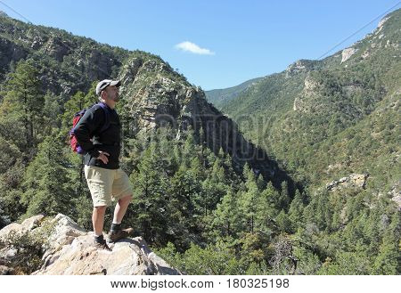 A Man Stands on a Rock Ledge Overlooking a Forested Canyon