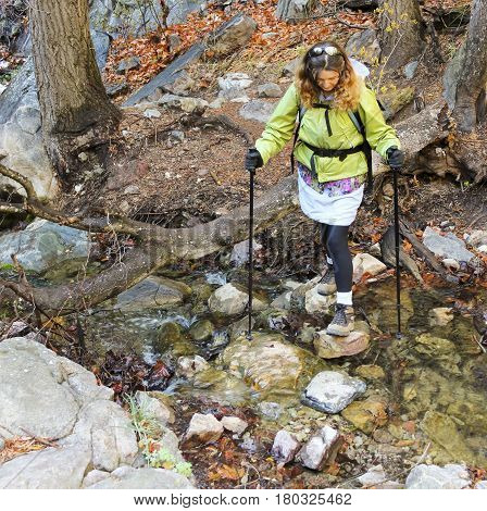 A Woman Hiker with Hiking Poles Carefully Crosses a Forest Creek