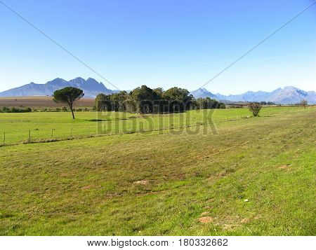 LANDSCAPE, WITH FIELD IN FORE GROUND AND BUSHES AND MOUNTAINS IN BACK GROUND