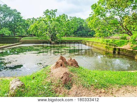 The Nature Of Sigiriya Water Gardens