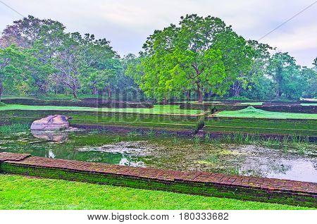 In Sigiriya Gardens