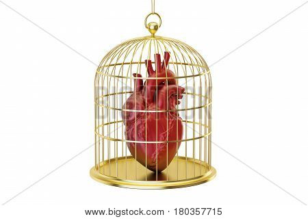 Birdcage with human heart 3D rendering isolated on white background