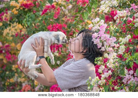 Asia Women And Dog Happy Smile Kissing