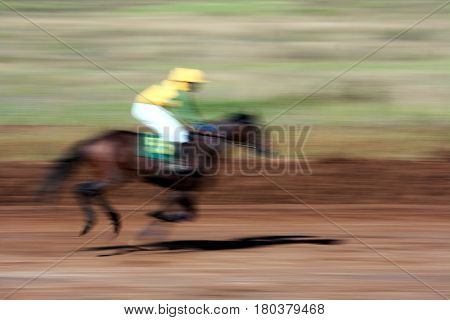 race horse in run,it is indistinct in the movement