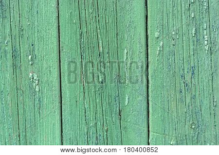 Texture of green wooden planks with some spaces between them