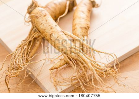 Korean Fresh ginseng over wooden background