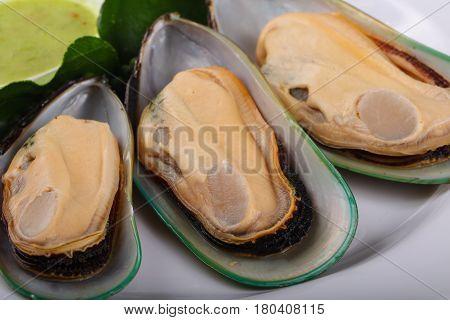 New Zealand Mussels