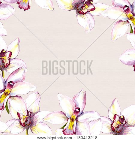 Floral beige background with white orchid flower. Hand painted aquarell drawing on paper texture