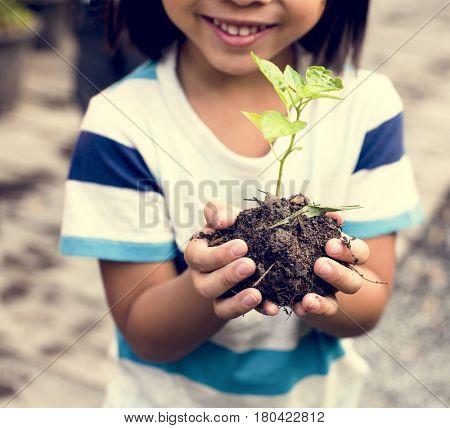Little Boy Hand Holding Little Tree on Hands