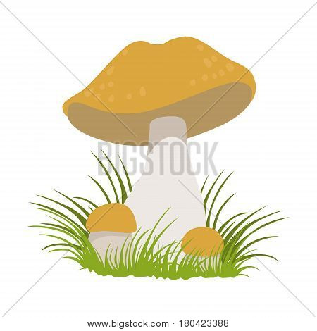 Lactarius quietus, edible forest mushrooms. Colorful cartoon illustration isolated on a white background