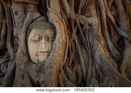 Ayuthaya, Thailand - December 20 2016: Wat Mahathat Temple In Ayuthaya Historical Park, A Unesco Wor