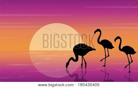 On lake scenery with flamingo silhouettes illustration