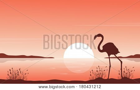 Silhouette of flamingo on lake scenery vector art