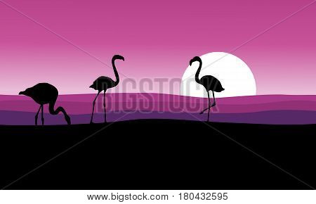 Flamingo with pink background scenery vector art