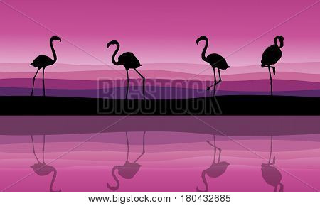 Silhouette of flamingo scenery with reflection vector art
