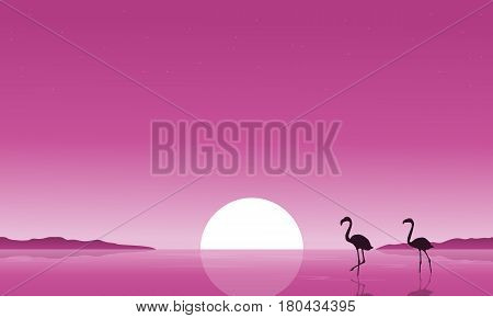 Collection stock of flamingo on lake scenery vector art