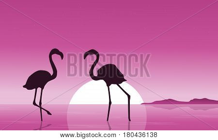 Collection of flamingo at sunset scenery vector art