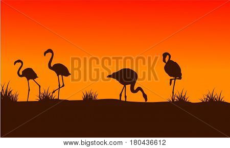Flamingo scenery at sunset silhouettes vector art