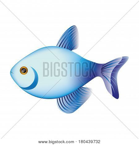 colorful fish aquatic animal icon vector illustration