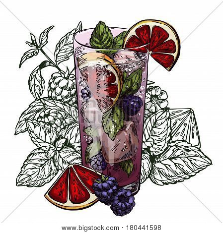 Cute poster or menu design with hand-drawn vector colorful sketch illustration of mojito cocktail, blood orange, blackberry and mint leaves, with the unfilled leaves on background