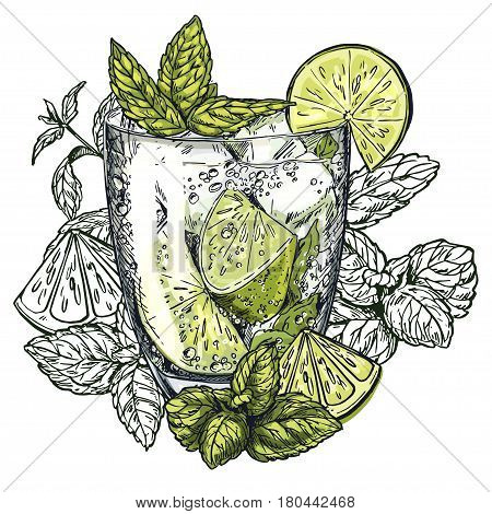 Cute poster or menu design with hand-drawn vector colorful sketch illustration of mojito cocktail, lime slices and mint leaves, with the unfilled leaves on background