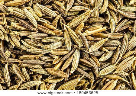 Dry seeds of cumin. Food background. Closeup macro shot. Top view.