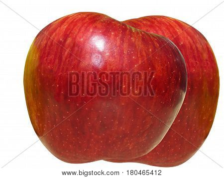 THE  APPLE IS CULTIVATED WORLWIDE AS A  FRUIT