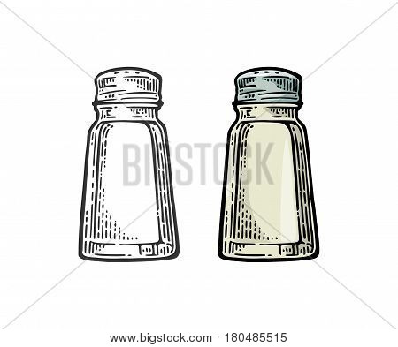 Salt shaker. Vintage black and color vector engraving illustration for label poster web. Isolated on white background