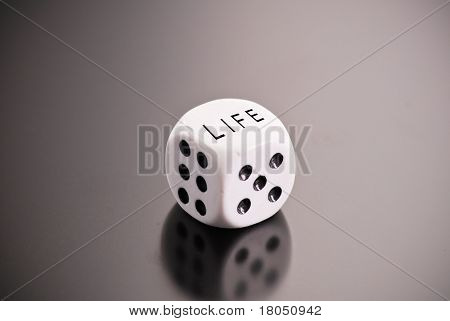 Rolling The Dice Of Life