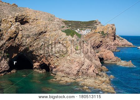 The Island of Berlenga is about 7 miles from the Port of Peniche with a maximum length and width of 1500 and 800 meters respectively a perimeter of 4000 meters 88 meters of maximum altitude and -30 minimum. Area with high botanical interest with several e