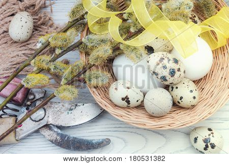 Chicken eggs in a basket on a wooden table and willow branches rural still life