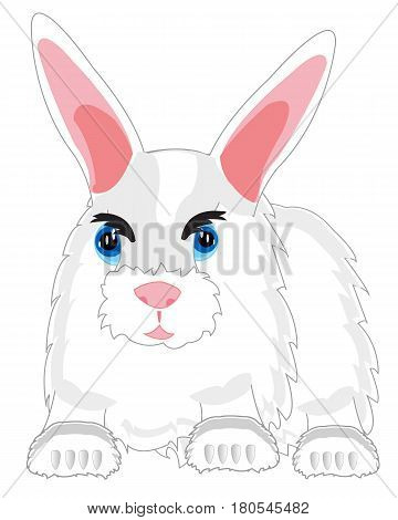 Cartoon of the feathery rabbit on white background is insulated