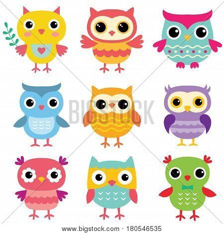 Isolated colorful cute cartoon owls, nine birds