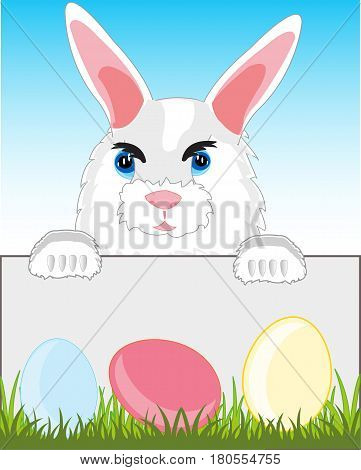 Cartoon of the rabbit on background sky and egg in herb