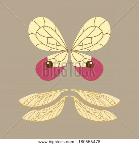 Wings isolated animal feather pinion butterfly freedom flight and natural hawk life peace design flying element eagle winged side shape vector illustration. Beauty haven soft anatomy graphic.