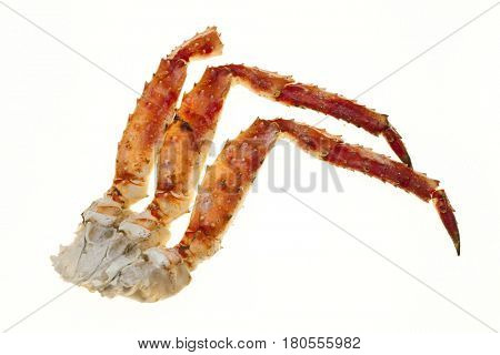 Crab meat in the shell. Crab legs closeup on a white background. Far East crab, a delicacy. Crab Cluster.