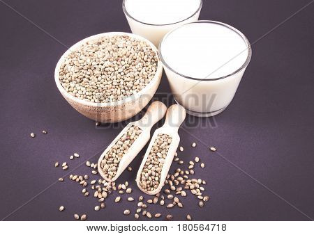 Hemp Milk, Seeds On The Dark Background . Close Up .