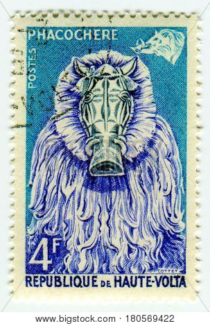 GOMEL, BELARUS, APRIL 4, 2017. Stamp printed in Republic of Upper Volta shows image of  The common warthog (Phacochoerus africanus) is a wild member of the pig family (Suidae), circa 1960.