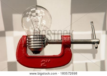 The bulb isolated on a white background