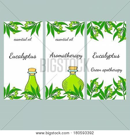 Essential eucalyptus oil labels vertical banners set. Eucalyptus plant leaf branch berry. For cosmetics perfume health care products aromatherapy banners