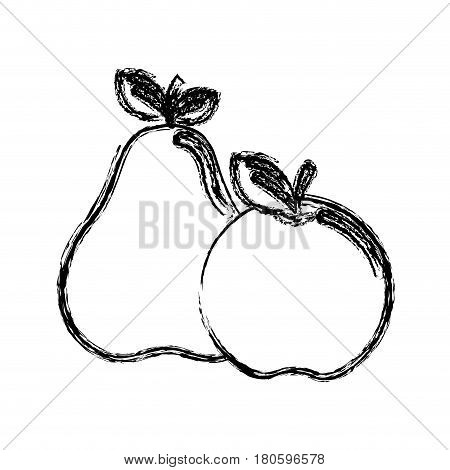 contour pear and apple fruit icon stock, vector illustration design