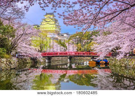 Himeji, Japan at Himeji Castle during spring cherry blossom season.