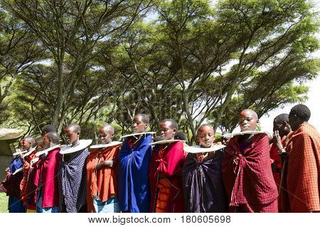 Maasi  Girls In Village Ceremony, Ngorongoro Conservationa Area, Tanzania