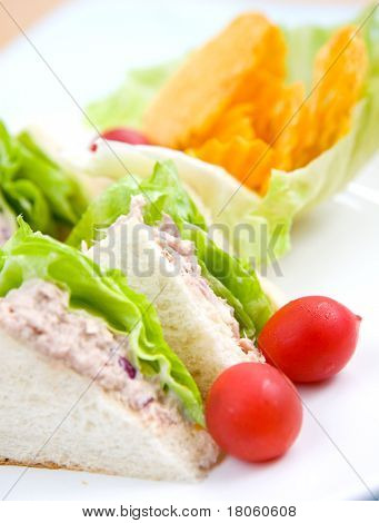 Delicious plate of tuna sandwich with salad and potato crisp on side