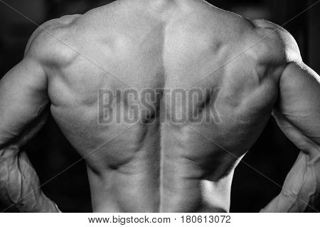 Handsome Power Athletic Man Diet Training Pumping Up Back Muscles