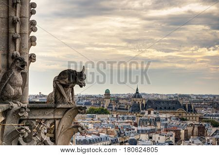 Chimera (gargoyles) of the Cathedral of Notre Dame de Paris overlooking Paris, France