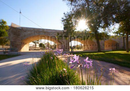 Serrano bridge in Valencia in Turia park at Spain spring flowers foreground