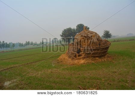Sitting silently a lonely haystack over looks a Haryana field. The stack tilts awaiting the well needed rest.