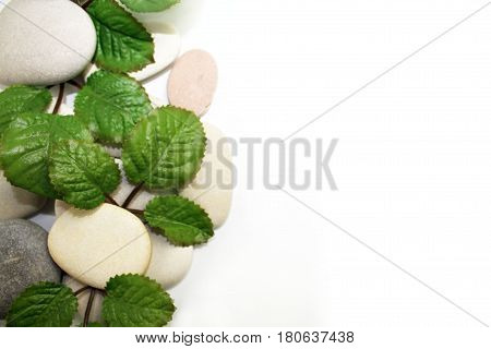 Light round smooth spa stones and green leaves with space on white background