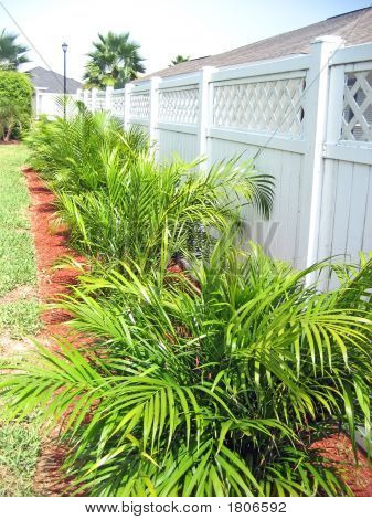 Green Plants Along White Fence